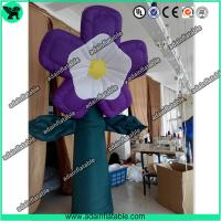 China Spring Holiday Event Party Decoration Inflatable Flower, Club Decoration Inflatable wholesale