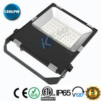 China Die Casting Aluminum Shell 50W SMD LED Floodlight With PHILIPS SMD3030 Chips wholesale