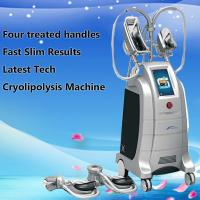 China distributors wanted freeze fat machine cryolipolysis for body sculpting wholesale