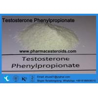 Buy cheap White Powder Testosterone Phenylpropionate for the GYM CAS 58-20-8 product