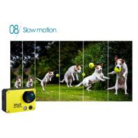 China High Difinition 1080P Outdoor Sports Camera / Small Action DV Camera for Pets USB 2.0 Port wholesale