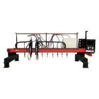 China High speed Multi-Head Vertical Strip CNC Plasma Cutting Machine for Industrial wholesale