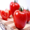 China brix 28-30% canned tomato ketchup wholesale
