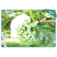 China OEM Disposable Nonwoven Fruit Protection Bag For Grape Size 20 cm 22cm wholesale