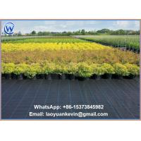 "Quality 40"" x 300 ft Ground Cover Nets Weed Control Landscape Fabric for sale"
