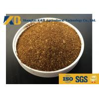 China Low Salt Cattle Feed Additives / High Protein Cattle Feed 20 - 30 Saturated wholesale