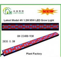 China High Effective LED Tube Grow Lights Hydroponic For Plant , Long Life Time wholesale