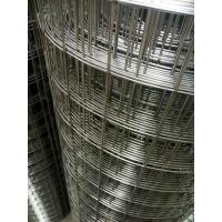 China Stainless 304 316 316L Welded Wire Mesh 1.5mm Wire Diameter Hole Size 50x50mm wholesale