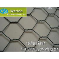 China Werson Chicken Wire,Poutry Netting,Hexagonal Wire Netting wholesale
