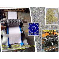 China Mold Testing Machine For Soft Capsule And Paintball Encapsulation wholesale