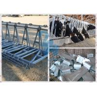 Quality Durable Locking Feed Barriers , 10FT Length Cows' Feed Head Lock Fence for Pasture for sale