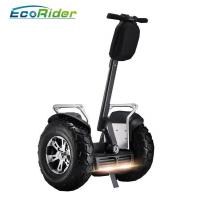 China Electric Self Balancing Scooters 21 inch big tire 2 wheel s4000w Segway wholesale