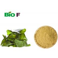China Functional Dietary Natural Food Flavourings Dried Seaweed Kelp Powder wholesale