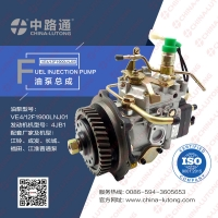 China bosch ve injection pump head rotor DP310 fuel injection pump head rotor wholesale
