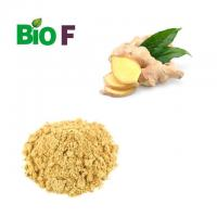 China Healthy Vegetable Extract Powder Yellow Ginger Extract Powder Gingerol 5% on sale