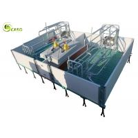 China Galvanized Adjustable Floding Pig Farrowing Crate Plastic Hollow Panel Pig Stall wholesale