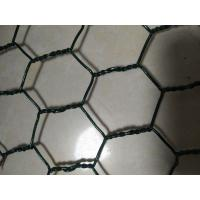 China 1 Inch Hexagonal Chicken Wire Diameter 1.2mm After Coated Pallet Packing wholesale