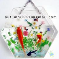 China Fashion cylinder acrylic fish aquarium wholesale
