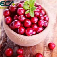 China Natural Origin Organic Cranberry Powder Red Fine Skin Care Food Supplements wholesale