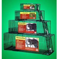 China Live Animal Trap Cage for Pest Control on sale