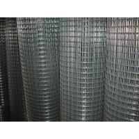 China Electronic Galvanized Welding Wire Mesh 1/2 Inch , Gi Wire Mesh 0.6m -2m Width wholesale