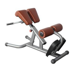 China BFT-2033 reverse hyper extension,Roman Chair workout equipment wholesale