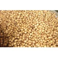 China Fresh Vegetable Long Organic Potatoes Contains Vitamins And Minerals, Fine quality, good taste on sale