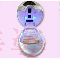 China Far Infrared Spa Capsule Slimming with Ozone System wholesale