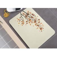 China Superabsorbent Force Non Slip Area Rugs Diatomaceous Earth Fast Drying Bath Mats wholesale