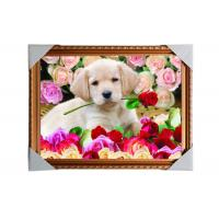 China Customised PET Pictures 3D Lenticular Printing Service Stock 3D Image PS Frame wholesale