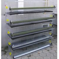 China Layer Quail Cage For Sale & Layer Quail Cage For Poultry Farm Equipment(Whatsapp +86 13331359638) wholesale