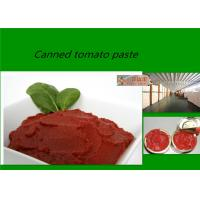 China Red Delicious Fresh Tomato Sauce  Brix 28 - 30% With Excellent Taste on sale