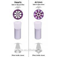 China Silver Diamond Heart / Arrow Scope with Magnification of 5X for Gemological laboratory FQG-1 wholesale