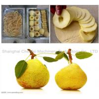 China 380V / 220V Fruit And Vegetable Processing Line Customized Size For Pear on sale