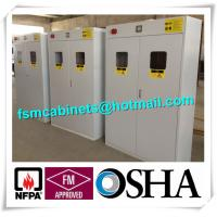 China Fire Resistance Steel Gas Cylinder Storage Cabinet White with Gas Detector wholesale
