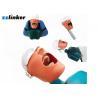 China Dental Simulator Dental Chair Unit Detnal Teaching Model Training Simulator Head with Belt wholesale