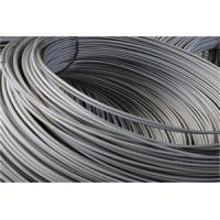 0.6mm - 1mm Stainless Steel Wire For Valve Sprayer And Valve Spring