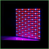 China IP54 Indoor LED Grow Lights / ABS Full Spectrum Plant Grow Lights 32 W For Greenhouse wholesale