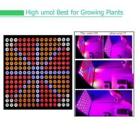 China Indoor Garden Full Spectrum LED Grow Lights For Reenhouses , 75W Wattage wholesale