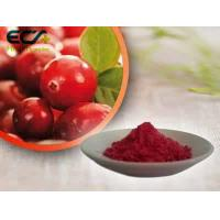 China Beauty Effect Organic Food Ingredients Red Fine Oxycoccos Cranberry Extract Powder wholesale