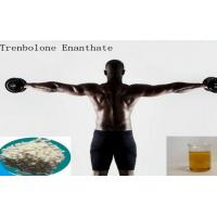 China High Purity Muscle Growth Pale Yellow Powder Trenbolone Enanthate / Parabola wholesale