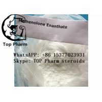 China 99% Purity Methenolone Enanthate/Primobolan enanthate CAS 303-42-4 for gaining muscles wholesale