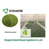 China Chlorella Protein Vegetable Extract Powder Green Algae Powder wholesale