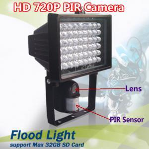 China Flood Light Security PIR DVR Camera IR LED Night Vision CCTV Surveillance DVR W/ 54pcs LED wholesale