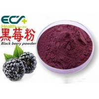 China Health Skin Care Supplements Freeze Dried Blackberry Powder Improves Digestion wholesale