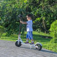 China EcoRider 2 Wheels Self Balancing Scooters 500W 8.5 Inch 36V Xiaomi Scooter Mobility wholesale
