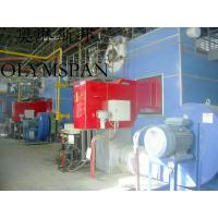China Low Pressure Horizontal Heating Thermal Gas Oil Fired Boiler , High Temperature wholesale