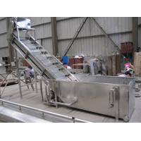 China Surfing Type Fruit Washing Machine , Commercial Fruit And Vegetable Washer Machine on sale