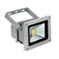China LED Flood Light COB 10W Epistar CHIP IP65 waterproof with meanwell driver wholesale