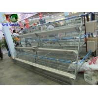 China poultry cage for large scale poultry feedcage wholesale